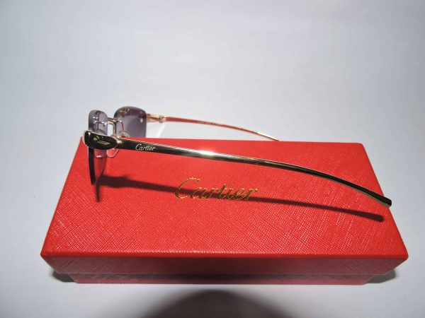Gafas Cartier 3 piezas Pantera